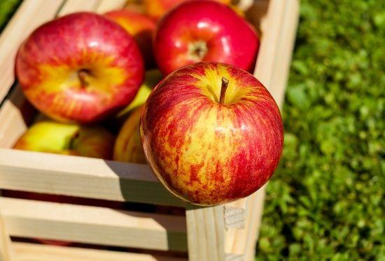 На українських ринках подешевшали яблука: кілограм коштує 6-11 грн
