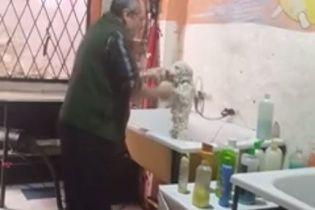 Юзеры Сети сходят с ума от забавного парикмахера для собак, который танцует с любимцем