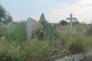 В Одессе оштрафуют семью за то, что оставили 2-летнего ребенка на кладбище