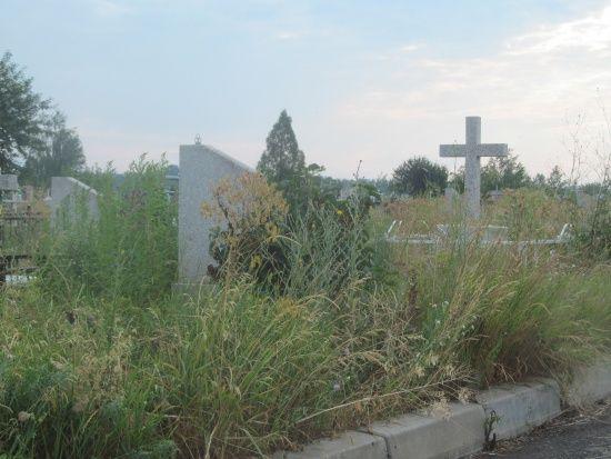 В Одесі оштрафують родину за полишення 2-річної дитини на цвинтарі