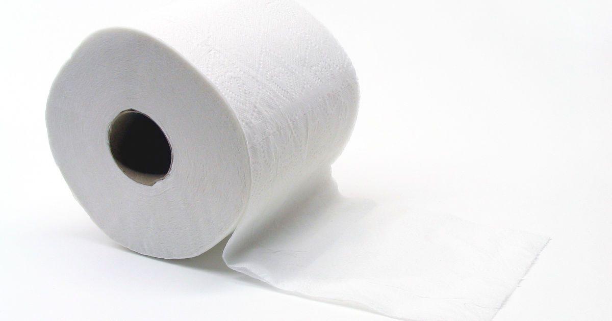 Соціальні стандарти України та Німеччини: рулон туалетного паперу в місяць проти 4,5 тисяч євро на навчання