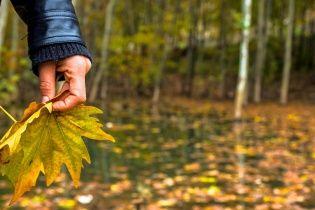 В останній день місяця температура на заході України впаде до нуля. Погода на 30 вересня
