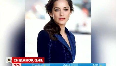 Подозреваемая разлучница Джоли и Питта беременна