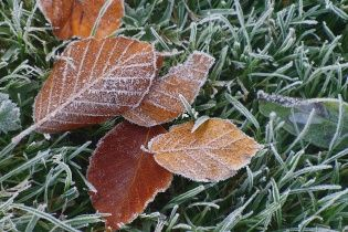 Синоптики попереджають про заморозки. Прогноз погоди в Україні на 21 вересня
