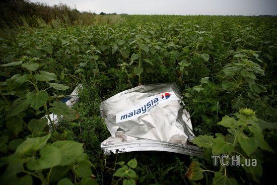 Нідерланди та РФ потайки обговорили катастрофу MH17