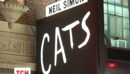 Взволнованный, но выражения морды не изменил: известный в мире сердитый кот начал турне