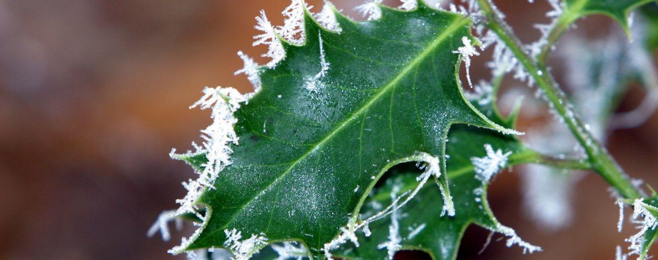 Синоптики предупреждают о заморозках в трех областях Украины