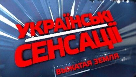 Боротьба влади з бурштиновою мафією: на Поліссі продовжується нелегальний видобуток бурштину