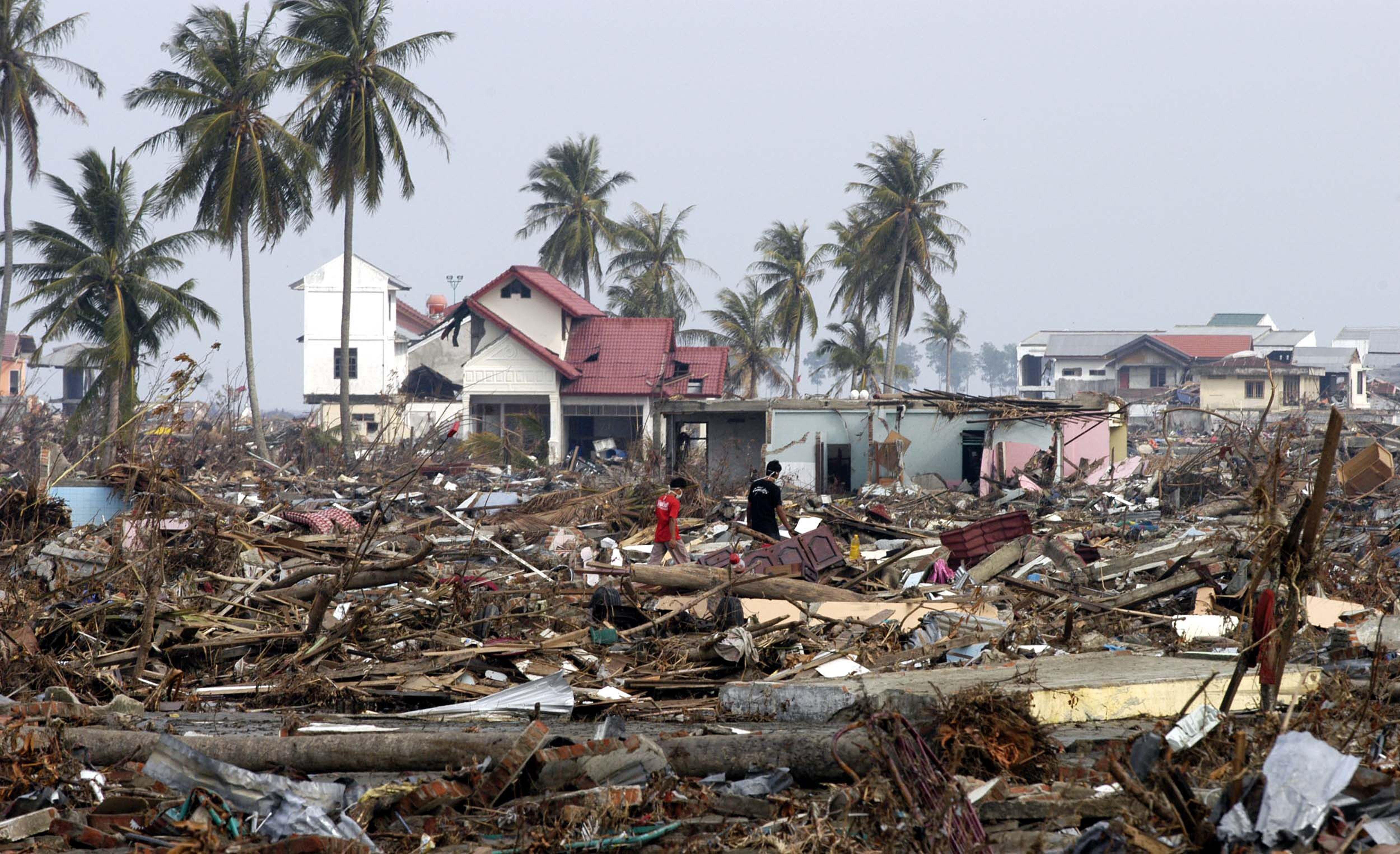 Цунами в Индийском океане. 2004 год_1