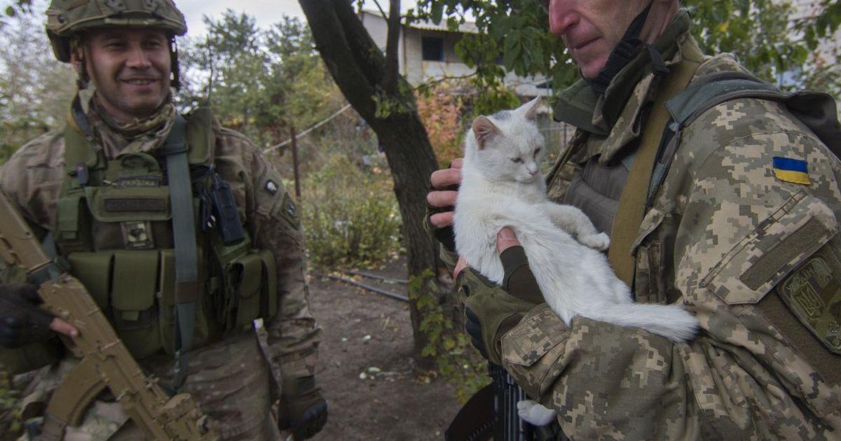 Український військовослужбовець тримає на руках кота в зоні проведення АТО у Донецькій області. @ УНІАН