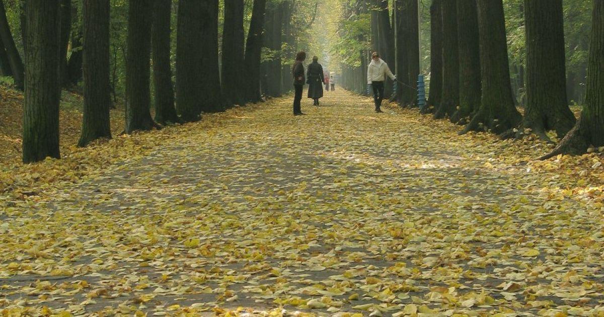 Останній день вересня в Україні буде сухим та прохолодним. Прогноз погоди на суботу