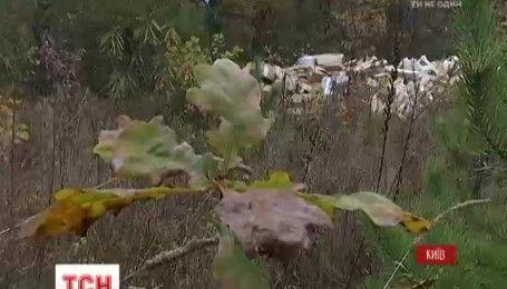 В лесополосе на Черниговщине нашли вредные люминесцентные лампы