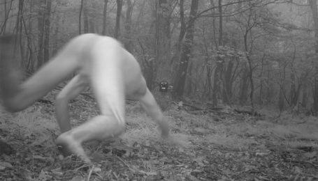 Камеры для наблюдения за животными сфотографировали полностью обнаженного мужчину