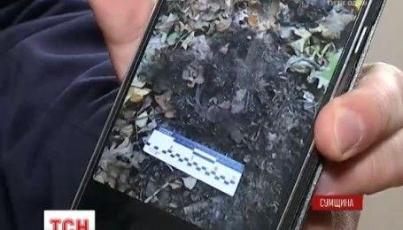 Пропажа человеческих останков: прокуратура заподозрила полицейских в утаивании преступления и улик