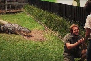Австралиец сделал предложение возлюбленной в присутствии трехметровой рептилии