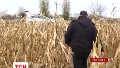 На Рівненщині правоохоронці з допомогою літака та квадрокоптерів ловили грабіжників у кукурудзі