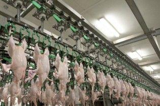 Євросоюз скасував заборону на імпорт м'яса птиці з України – урядовець