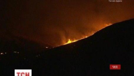 В Чили выгорело более двух тысяч гектаров лесов