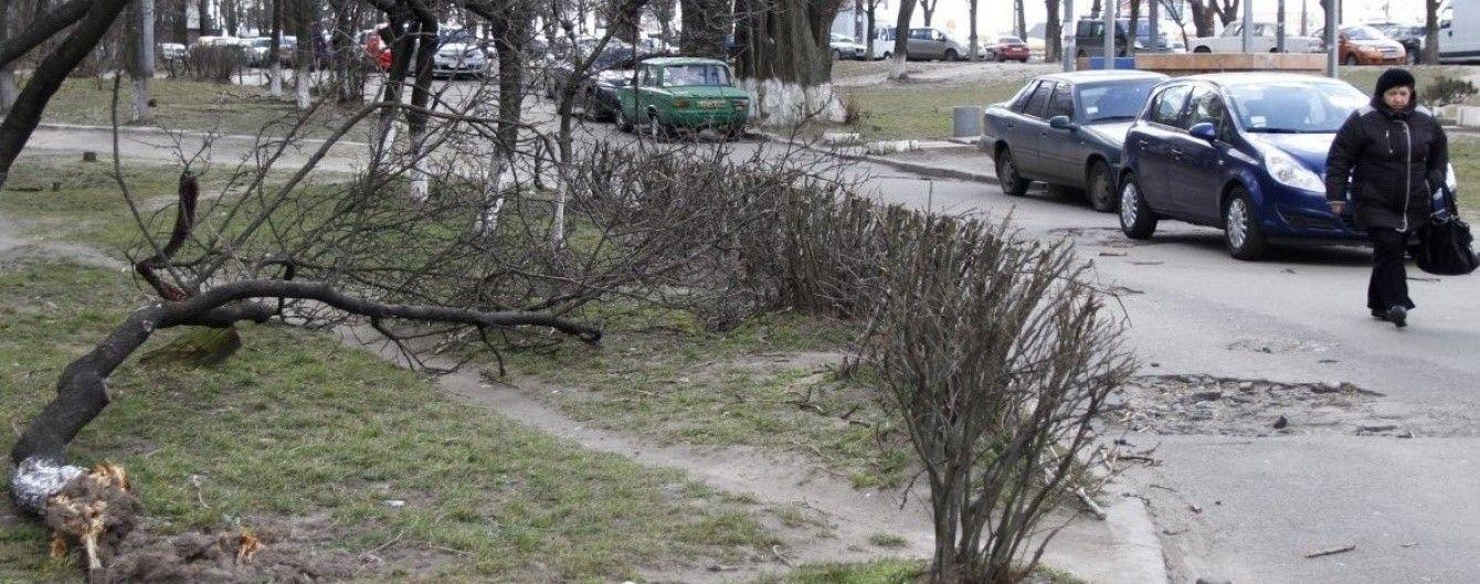 На Львівщині штормовий вітер валить дерева