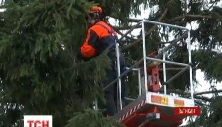 Для украшения рождественской елки в Ватикане подготовили 18 тысяч фонариков