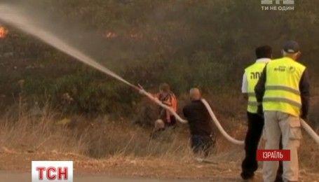Масштабні пожежі в Ізраїлі уряд прирівнює до терактів