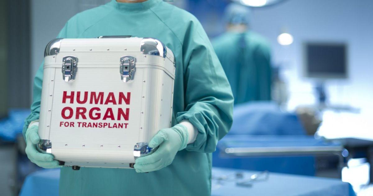 Рада ухвалила запуск нової системи трансплантації