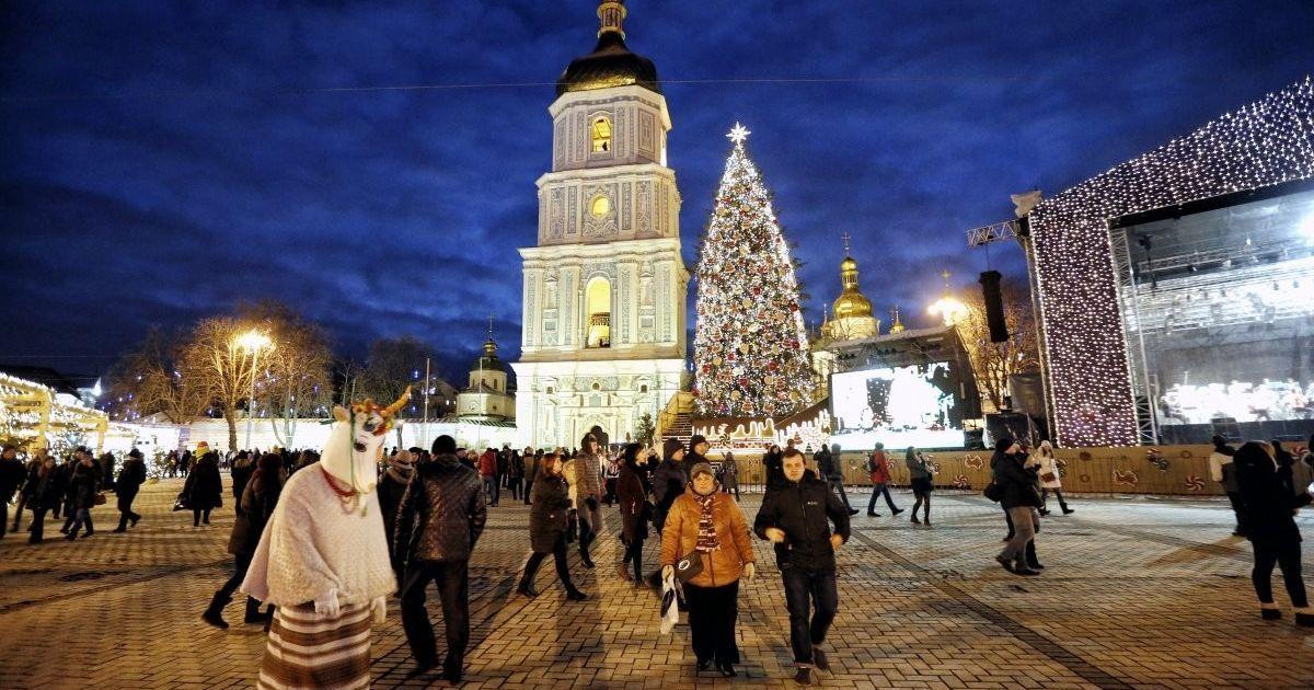В Киеве на Софиевскую площадь привезли главную елку страны