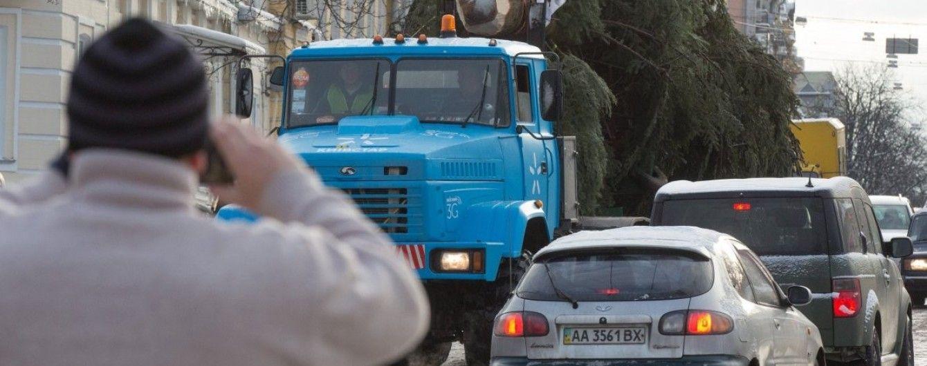 Біля київської ялинки-рекордсменки встановлять оглядове колесо
