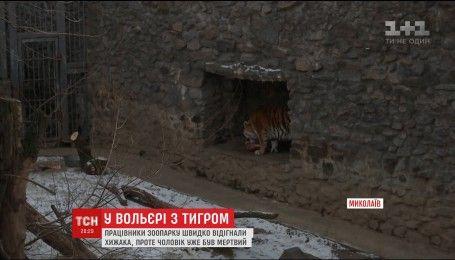 В Николаевском зоопарке мужчина прыгнул в вольер к амурскому тигру
