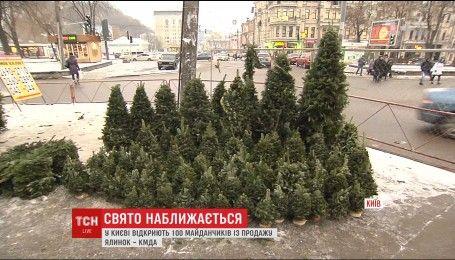У Києві відкриваються ялинкові базари