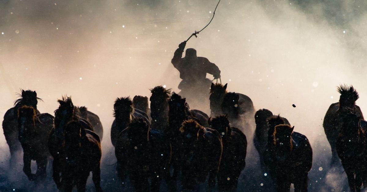 Гран-прі: «Зимовий вершник», Внутрішня Монголія @ national geographic
