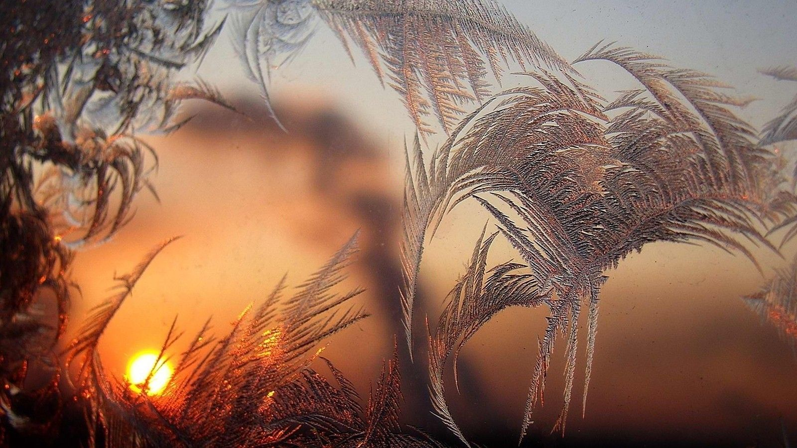 Зима, сонце, природа