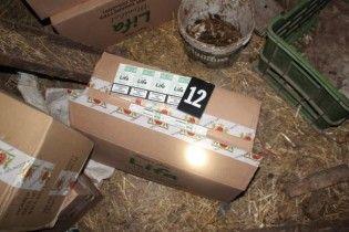 На Львовщине поймали украинца, который фурой вез в ЕС рекордное количество контрабандных сигарет