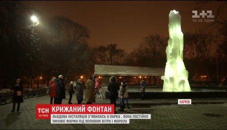 В Харькове вырос ледяной фонтан