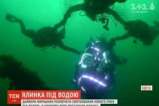 Дайвери України занурюються в крижану воду, щоб відзначити Новий рік