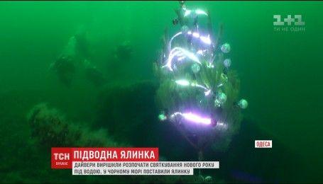 Одесские дайверы отпраздновали Новый год под водой
