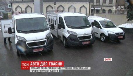 У Дніпрі з'явилися перші в Україні спецмашини для безпритульних тварин