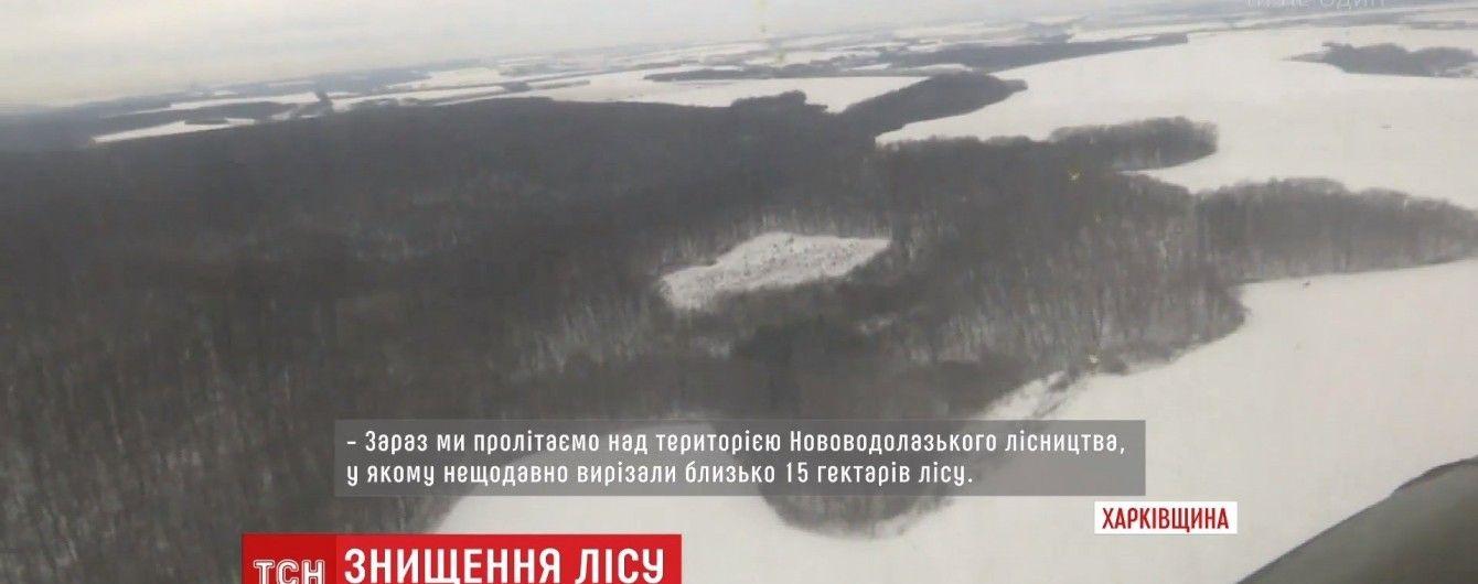На Харьковщине просят приравнять вырубку леса к терроризму