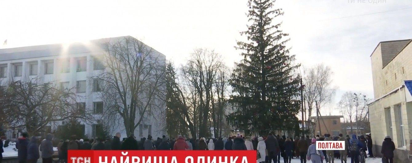 Провінційне місто на Полтавщині прикрасило найвищу живу ялинку в Україні
