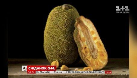 Джекфрут - фрукт, що здатен замінити м'ясо в раціоні
