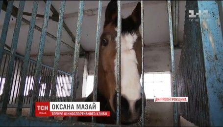 На Днепропетровщине разгорелся скандал из-за издевательств на частной базе над породистыми лошадьми