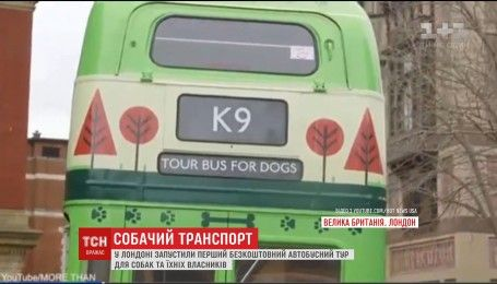 У столиці Великобританії запустили перший автобусний тур для собак