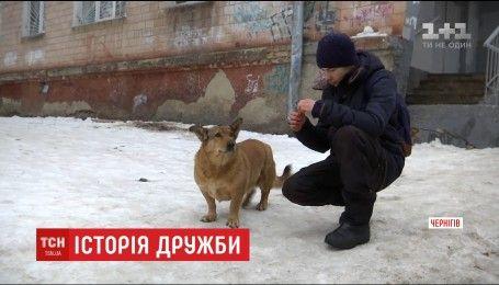 Неймовірна історія дружби між хлопчиком та собакою