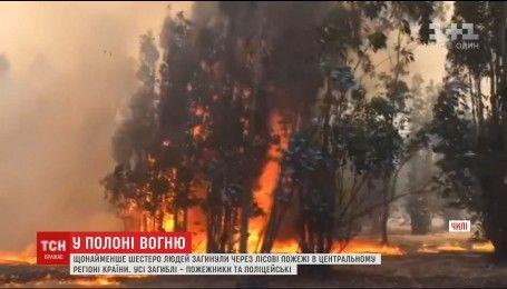 Щонайменше шестеро людей стали жертвами лісових пожеж у Чилі
