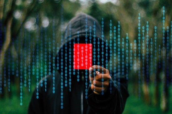 Масштабну хакерську атаку у Німеччині здійснив студент-одинак, якого дратували заяви політиків