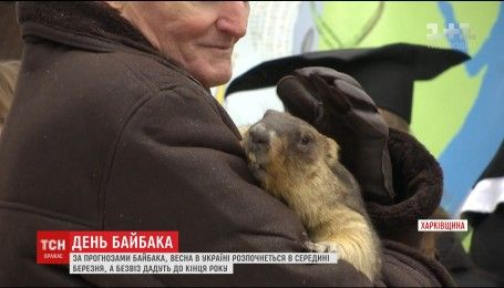 Харьковский сурок Тимко предсказал украинцам раннюю весну