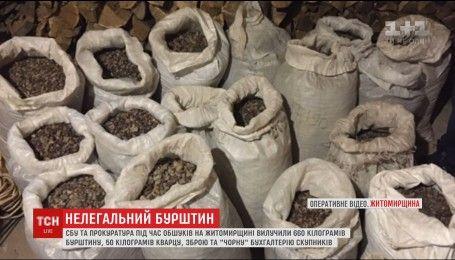 Более полтонны нелегального янтаря изъяли в Житомирской области сотрудники СБУ