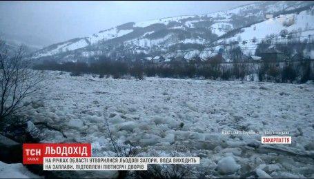 Разрушенные дома и подтоплены дворы: на Закарпатье ледоходы сносят все на своем пути