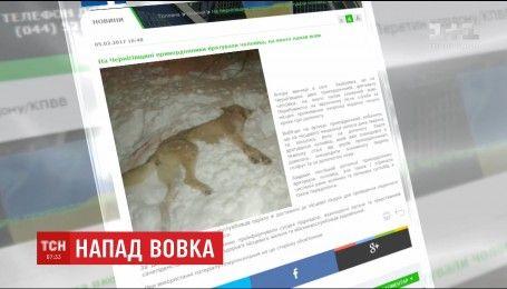 На Черниговщине пограничники спасли мужчину от нападения волка