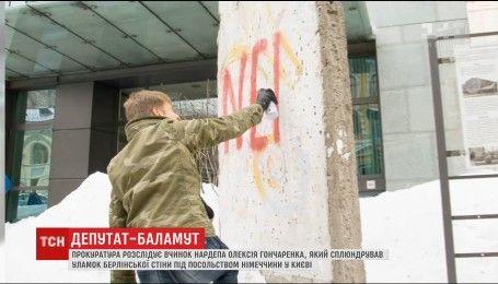 За паплюження Берлінської стіни Гончаренка можуть виключити зі складу делегації ПАРЄ